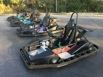 Shaller Slick Track Wedge Go Karts For Sale