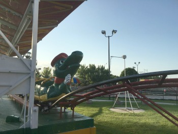 Go Gator Roller Coaster For Sale