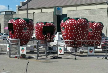 Berry Go Round Children's Amusement Ride For Sale, Sellner